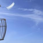 Entreprise libérée: rêve ou réalité ?