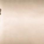 Motivation, efficacité et influence: Comment la fierté stimule votre leadership